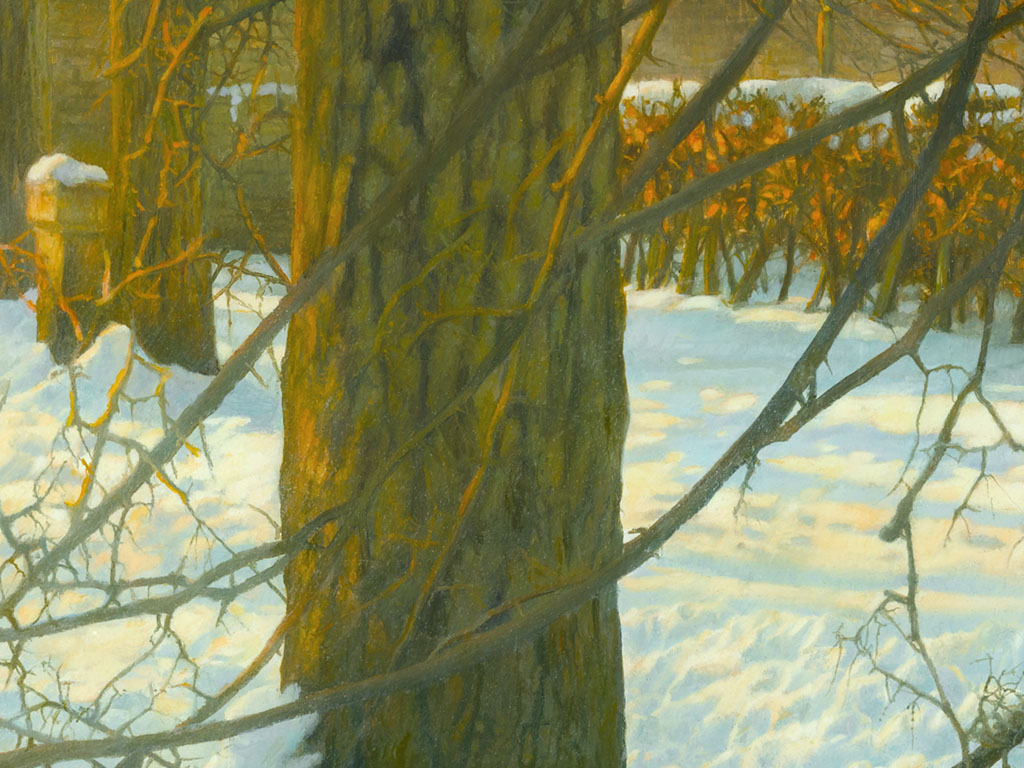Zon over de besneeuwde bomen, 9 x vergroot, sun over the snow and the trees, 9 times enlarged