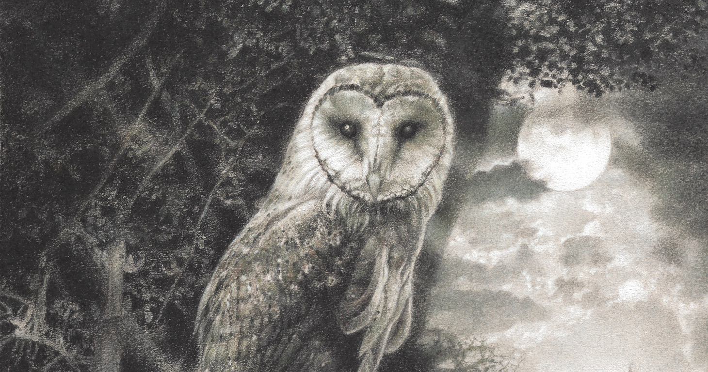 Paul Christiaan Bos: Barnowl at full moon