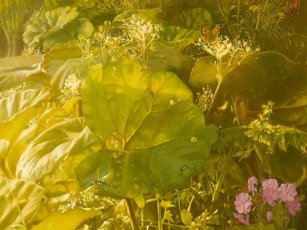 Butterbur on the banks
