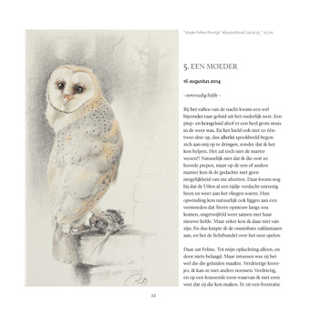 a page from the book  -Garden of Owls- from artist/writer Paul Christiaan Bos, published by Uitgeverij Noordboek