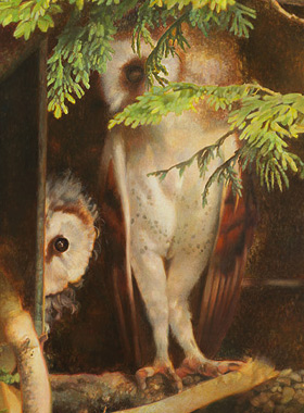 Paul Christiaan Bos: motherly love in the barnowl. Feline and Molly when chick, acrylics