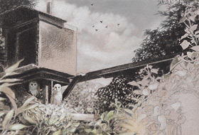 Paul Christiaan Bos: The Nest, chicks le Fay and Ariane alert and intrigued on their lookout post